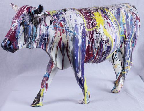 Vache multicolors