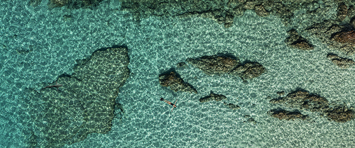 View from the sky : Turquoise water & Shark