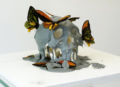 Vanité aux papillons gris