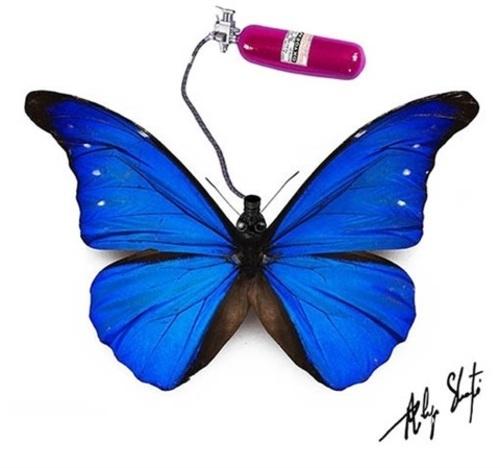 Gasmask Butterfly